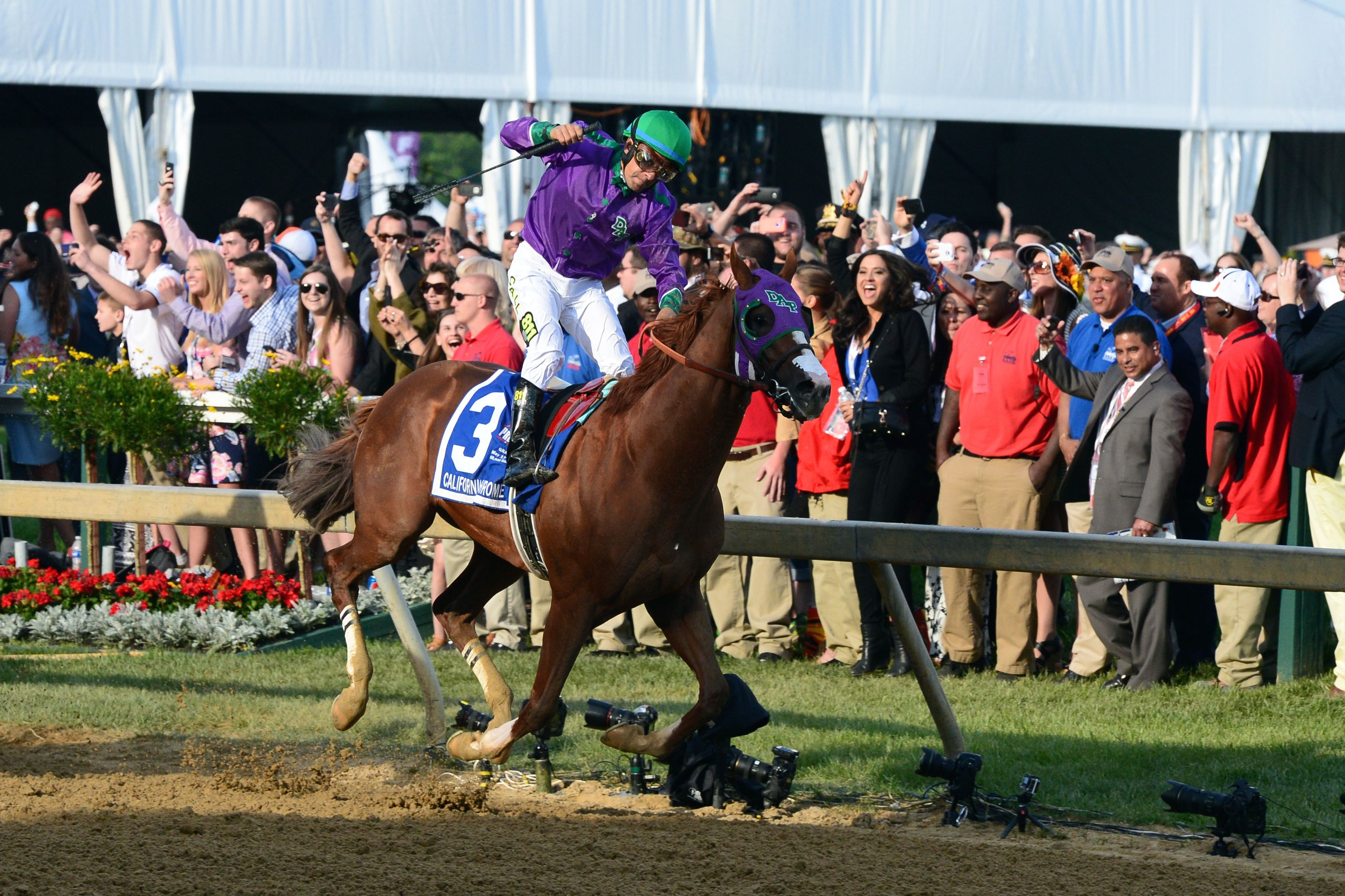 horse racing, Preakness Stakes