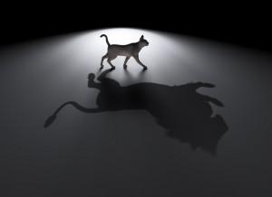 Dream, dreams, cat, lion, ambitious, ambition, shutterstock_144636674
