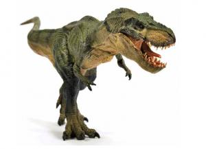 t rex, Tyrannosaurus ,