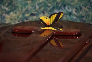 Butterfly on coffin