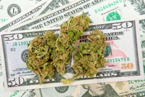Cannabis Data Report VC