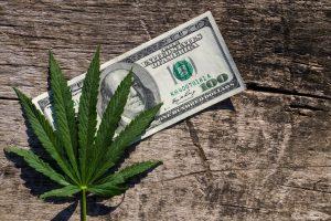 Cannabis Blockchain VC