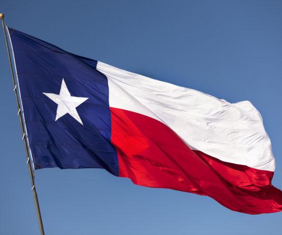 Texas, state flag,