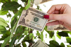 VCJ Venture MoneyTree