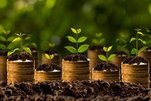 NACUBO-TIAA, endowments, private equity, venture capital