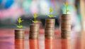 seed investing, seed capital, coins, seedlings, growth, nurture