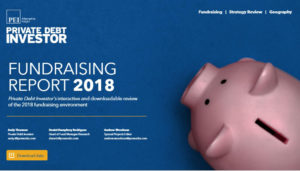 PDI Annual Fundraising report 2019