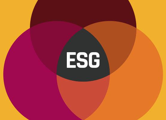 ESG Survey cover
