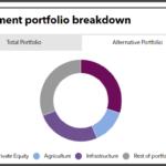 FMO alternatives portfolio