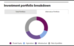 FMO alternatives portfolio