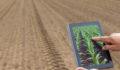 using data to maximise agri yields