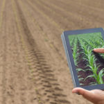 using data to maximise agri yields