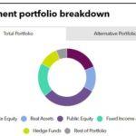 Investment portfolio breakdown of IFC