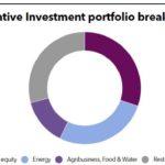 FMO Alternative Investment Portfolio