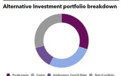 FMO Alternative Investment Portfolio