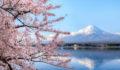 EQT Japan