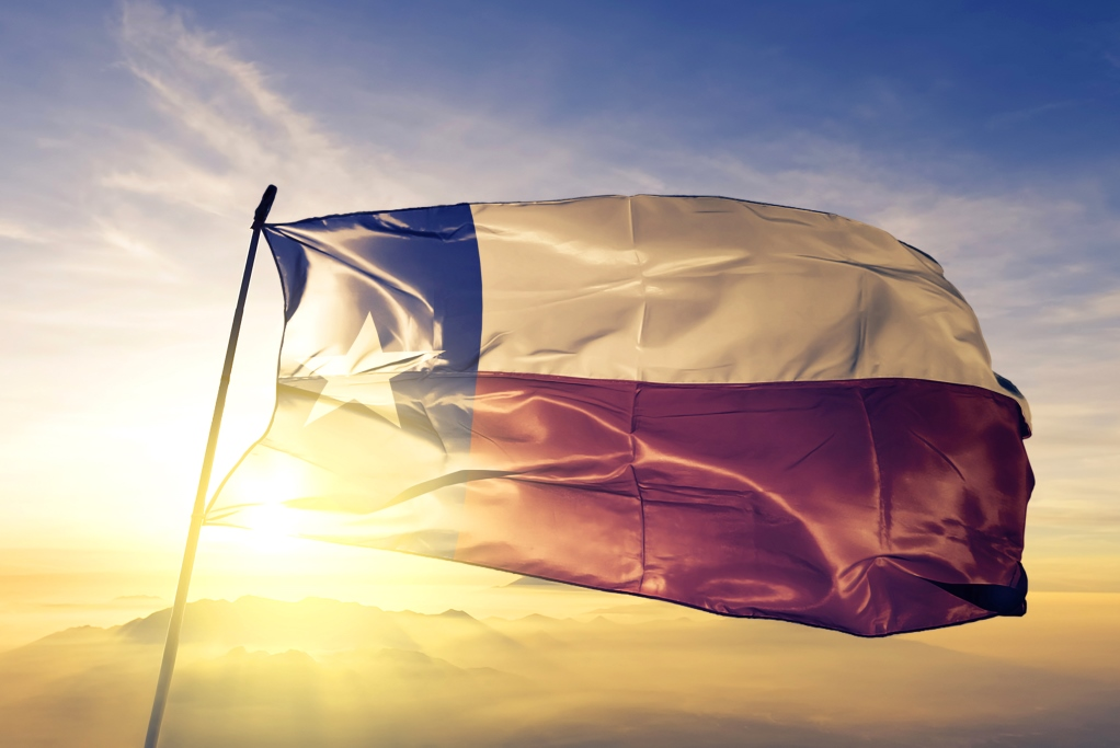Texas, Texas municipal retirement system, private equity