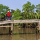 Vietnamese women riding bicycle, Mekong River Delta, Vietnam
