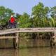 Vietnamese women riding bicycle, Mekong River Delta, Vietnam