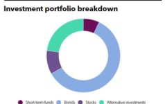 Investment portfolio breakdown of CWMAA