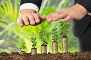 growing capital, small to big, growth, sprout, grow, business,