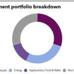 FMO Portfolio Breakdown