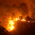 Raging bush fire