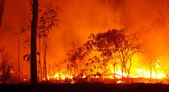 A fire i Queensland