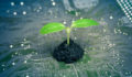 Impact investing technology