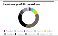 Investment portfolio breakdown of Texas Municipal Retirement System