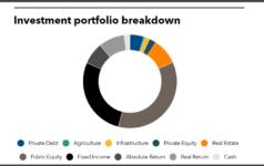 Investment portfolio breakdown of Texas Municipal Retirement System