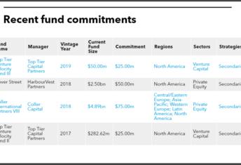 Investment portfolio breakdown of New Hampshire Retirement System