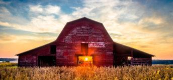 Mississippi Farm