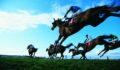 Horse Race Betting