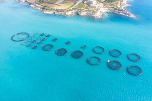 Aquaculture, fish farming