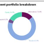 Investment portfolio breakdown of Yellow Umbrella