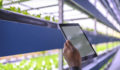 Ag-Tech, Software Monitoring Indoor Farm, greenhouse