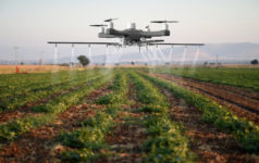 Drone spraying a field, agtech, crops