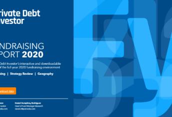 PDI Fundraising Report 2020