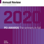 PEI Annual Review