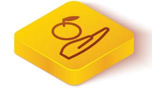 hand fruit tile icon