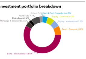 Investment portfolio breakdown of Cathay Life Insurance