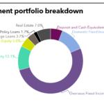 Investment Portfolio breakdown of Fubon Life Insurance
