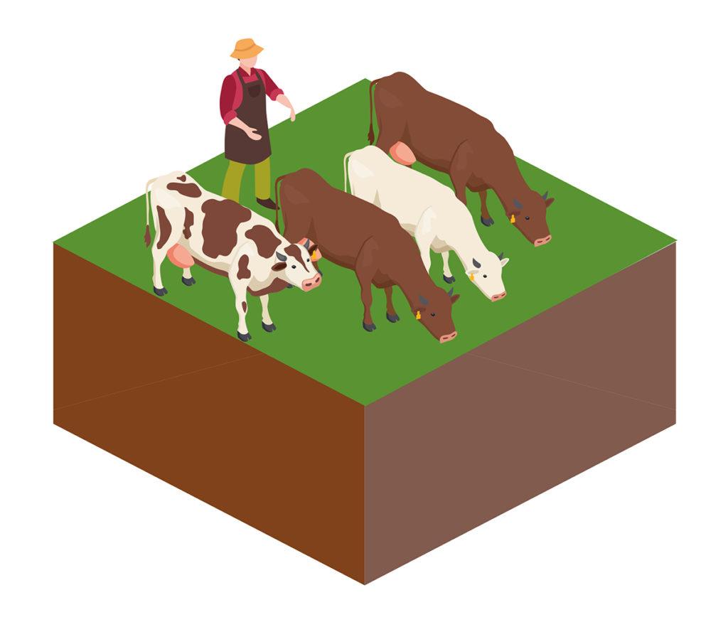 30 graphics measurement agriculture