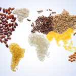 World map with grains, agriculture, farm