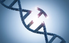 Genetic engineering, DNA, gene editing, CRISPR