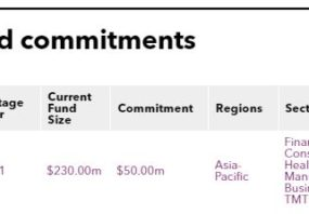 Recent fund commitments of Yue Yuen Industrial