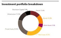 Investment portfolio breakdown of SEMA