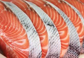 Salmon, fish, aquaculture