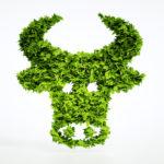 Carbon, emissions, farm, cattle, methane
